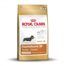 Royal Canin Breed Dachshund ( Teckel ) Junior