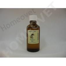 MediScent Eth. Rhininol Stoom - Olie